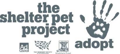 www.theshelterpetproject.org